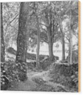 Woods, Troutbeck, Windermere Wood Print