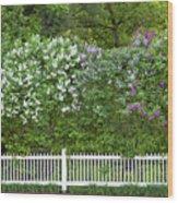 Woodstock Village Lilacs Wood Print