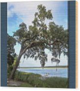 Woodstorks At Oak Grove Island Wood Print