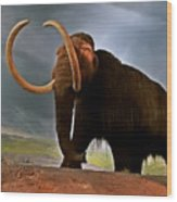 Woolly Mammoth Wood Print