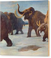 Wooly Mammoths Near The Somme River Wood Print