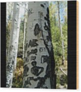 Words Written In The Trees 1 Wood Print