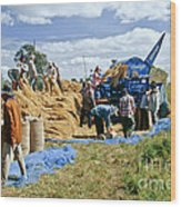 Workers Loading Rice Wood Print