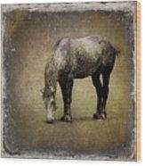 Working Horse Wood Print