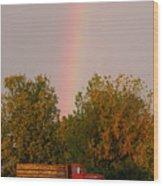 Working Rainbow Wood Print