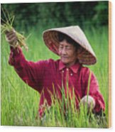 Working The Fields, Thailand Wood Print