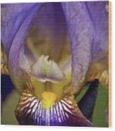 World Inside Of Iris Wood Print