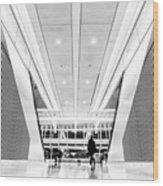 World Trade Center Transportation Hub, Lower Manhattan New York Wood Print