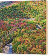 Worlds End State Park Lookout 3 - Paint Wood Print