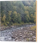 Worlds End State Park Loyalsock Creek Wood Print