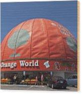 World's Largest Orange Wood Print