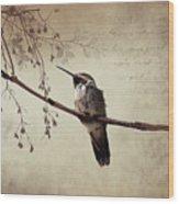 World's Smallest Bird Wood Print