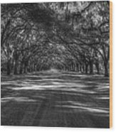 Wormsloe Plantation 2 Live Oak Avenue Art Wood Print