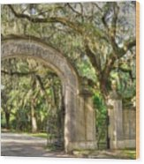 Wormsloe Gate Wood Print