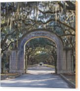 Wormsloe Gates Wood Print