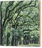 Wormsloe Georgia No. 7668 1 Of 3 Set Color Wood Print
