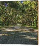 Shadows Of Wormsloe Plantation Oak Avenue Georgia Art Wood Print