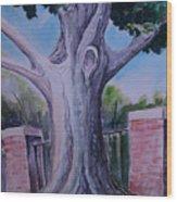 Wortham Oak Wood Print