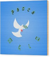 Wounded Dove Symbol Of Peace  Wood Print