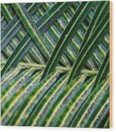 Woven Wood Print