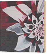 Wow Dahlia Wood Print