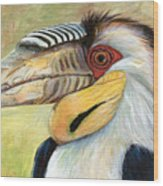 Wreathed Hornbill  Wood Print