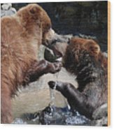 Wrestling Grizzly Bears In A Shallow River Wood Print