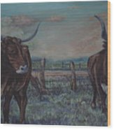 Wright Longhorns Wood Print