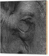 Wrinkles Wood Print