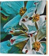Wrinkly Petals Wood Print