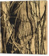 Writhe Of My Soul Wood Print