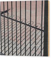Wrought-iron Gate And Shadows Wood Print
