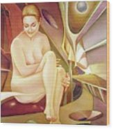 Ws1990dc008ar Sylvia Buenos Aires 20x24.5 Wood Print