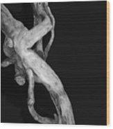 Wudu 1 Xxxix Wood Print
