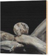 Wudu 1 Xxxvii Wood Print