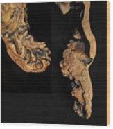 wudu 2 XXXXIV Wood Print