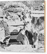 Wwi, Nell British Messenger Dog Wood Print