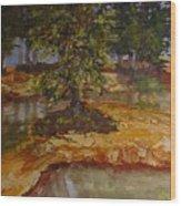 Wylie's Island Wood Print