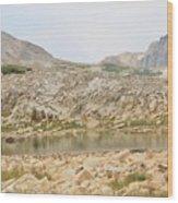 Wyoming At Altitude 4 Wood Print