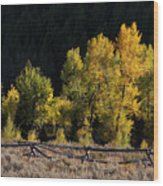 Wyoming Autumn Color One Wood Print
