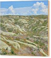 Wyoming Badlands Wood Print