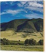 Wyoming Beauty Wood Print