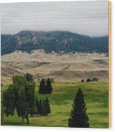 Wyoming Landscape 51a Wood Print