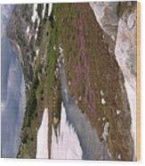 Wyoming Snow'y Range Wood Print