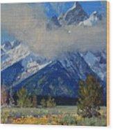 Wyoming Summer Wood Print