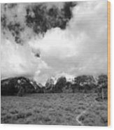Wyoming's Big Sky Wood Print