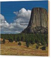 Wyoming's Devil's Tower Wood Print