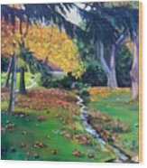 Wyomissing Creek Wood Print