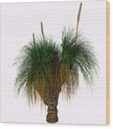 Xanthorrhoea Australis Tree Wood Print