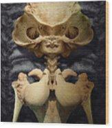 Xenofem Wood Print